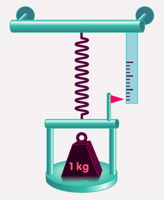 Kraftmessung der Gravitationskraft durch eine Feder