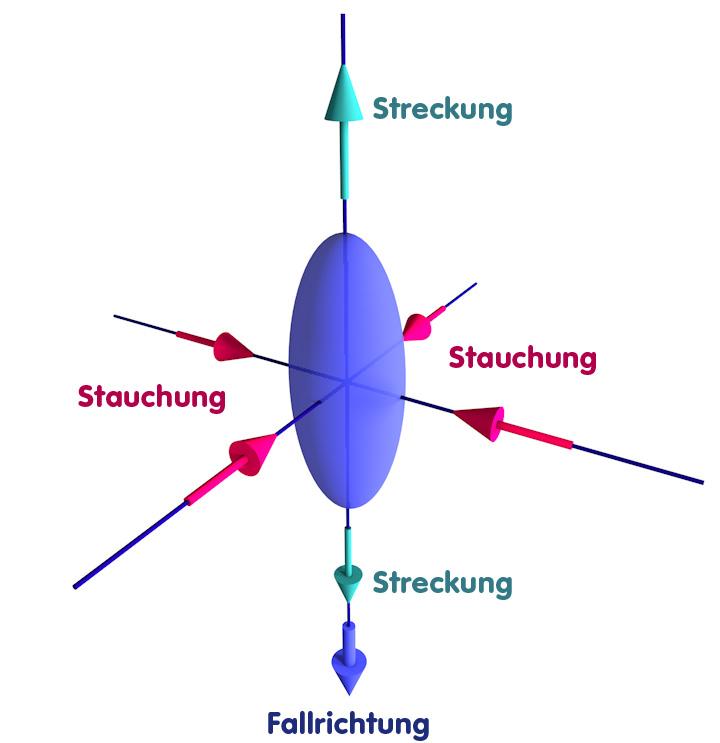 Objekt, das sich der Singularität naehert und dabei deformiert wird: Streckung in Fallrichtung, Stauchung in den zwei Richtungen senkrecht dazu
