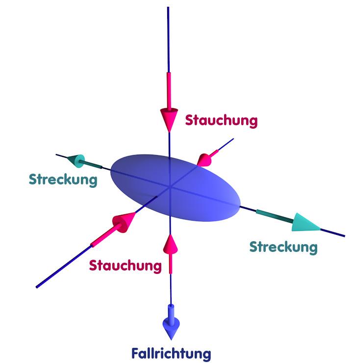 Objekt, das sich der Singularität naehert und dabei deformiert wird: Stauchung in Fallrichtung und einer Richtung senkrecht dazu, Streckung in der dritten Richtung.