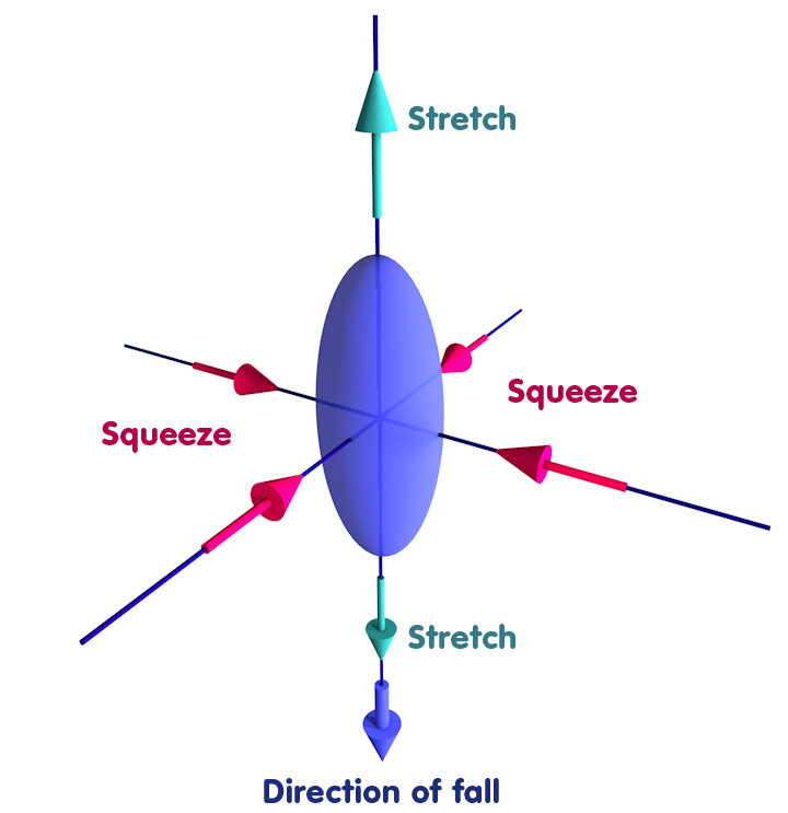 Object deformed into an ellipsoid: Stretched in the direction of fall, squeezed in the other two directions