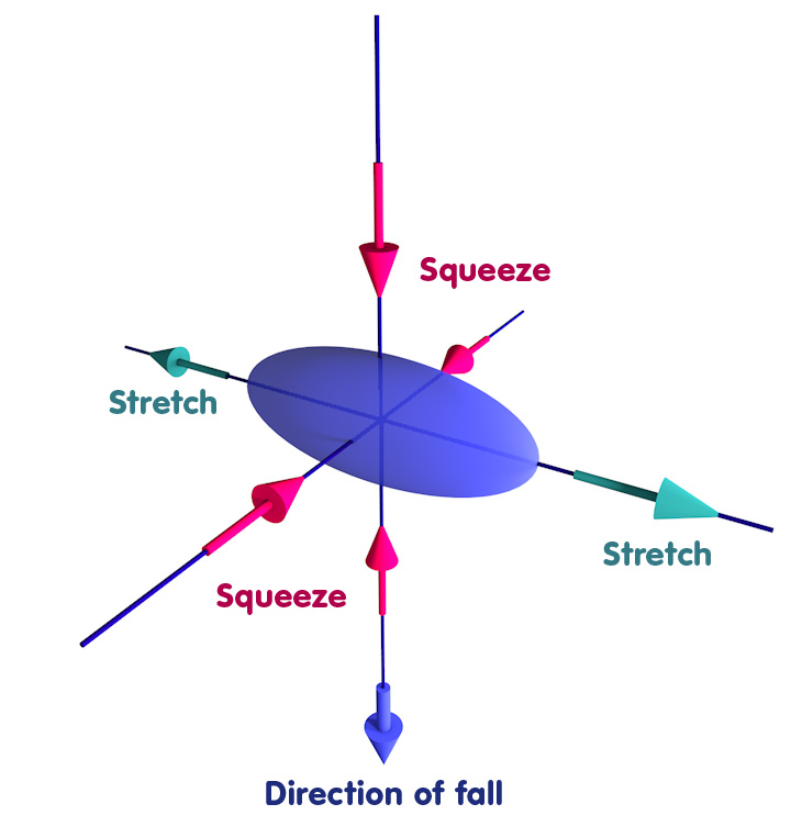 Object deformed into an ellipsoid: Squeezed in the direction of fall and one other direction, stretched in the remaining direction